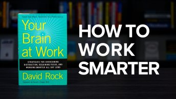 Your Brain At Work By David Rock Book Summary